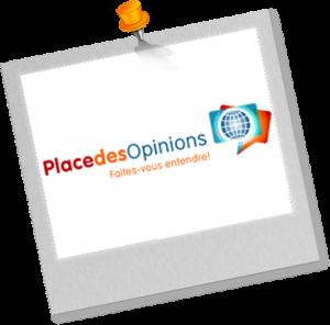 activité complémtentaire - sondage rémunéré : Place des opinions