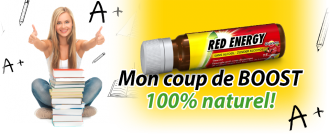 red-banner_metro_fr-be