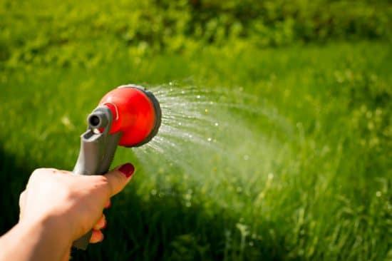 économiser l'eau du jardin