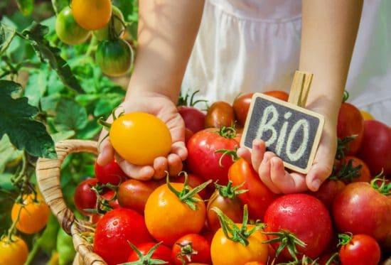 manger bio pas cher